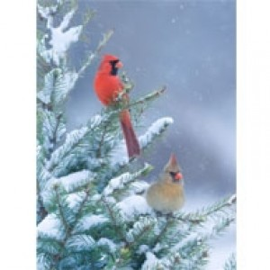Cardinals Perforated Bookmarks