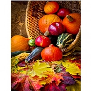 Fall Harvest  Perforated Bookmarks