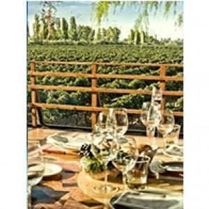 Vineyard Gathering